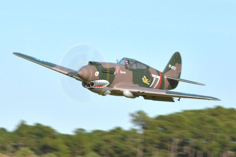 P-40B Curtiss Warhawk Flying Tiger Flugmodell 1400mm PNP