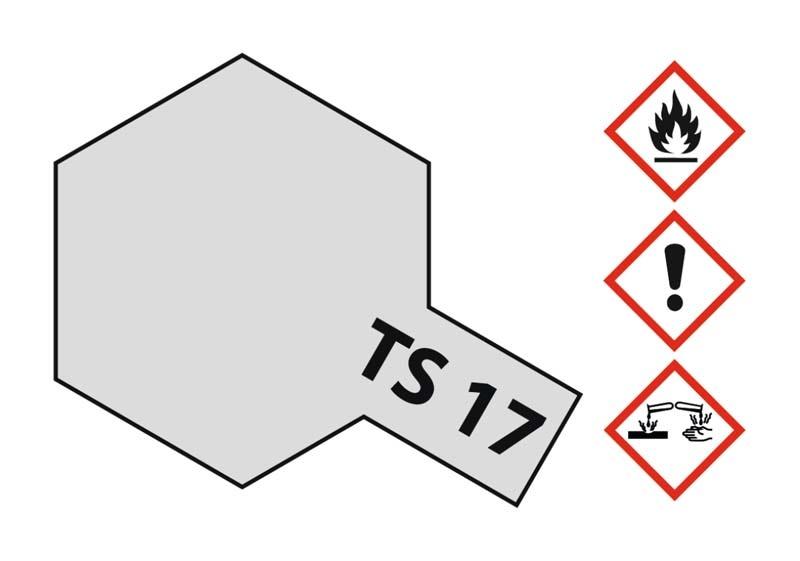 TS-17 Aluminium Silber glänzend 100ml