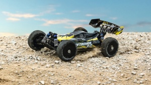 FY8 Buggy Destroyer 2.0 4S RTR 1:8